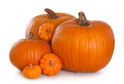 USA Pumpkins