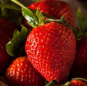 New Zealand Long Stem Strawberries
