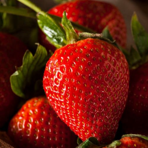 New Zealand Long Stem Strawberries
